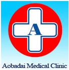 Aobadai Medical Clinic HP (1)